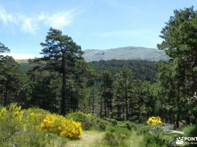 Chorranca y Silla del Rey, Cerro del Moño de la Tía Andrea;pueblos con encanto madrid amistades ruta